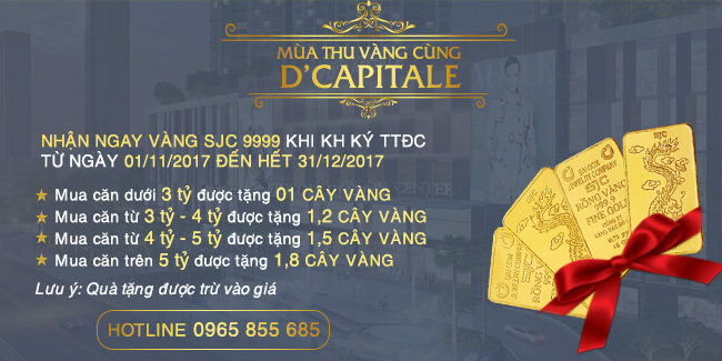 chinh-sach-d-capitale-tran-duy-hung-avt